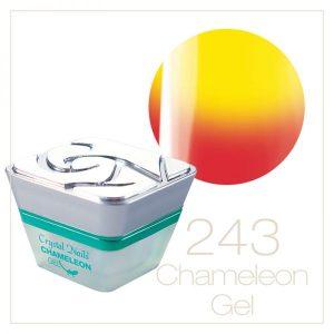 Chameleon Photosensitive Gel 243