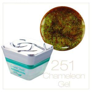 Chameleon Transparent Gel 251