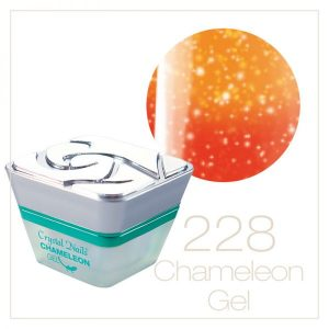 Chameleon Thermosensitive Gel 228