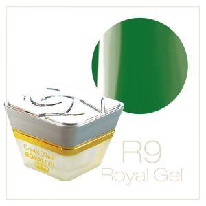 RoyalGel R9
