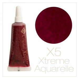 Aquarell Farbe X5