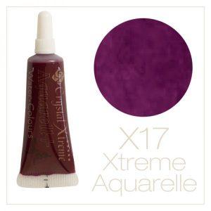 Aquarell Farbe X17