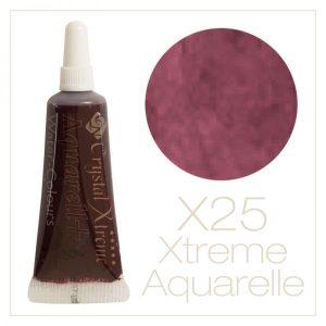 Aquarell Farbe X25