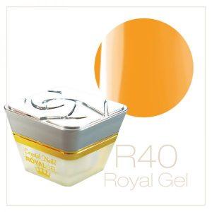 RoyalGel R40