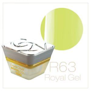 RoyalGel R63