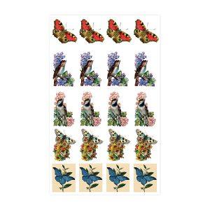 Vögel & Schmetterlinge